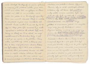 Deník z vězení